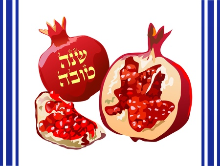 Rosh Shoshana greeting card with pomegranate  Stock Vector - 12496881