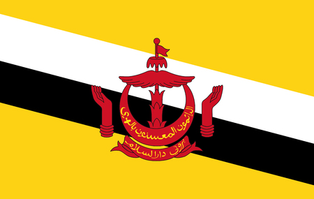 Brunei flag illustration Archivio Fotografico - 106369330