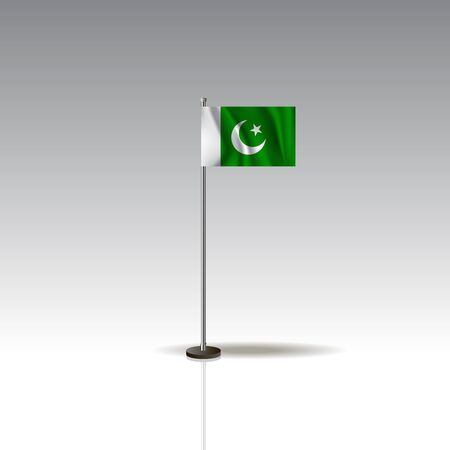 National Pakistan flag isolated on gray background.