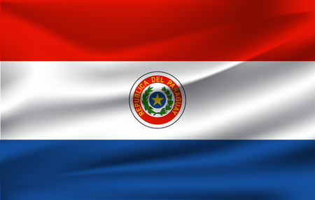 3D Waving Flag of Paraguay