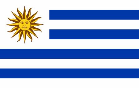 Vector la bandiera dell'Uruguay, l'illustrazione della bandiera dell'Uruguay, l'immagine della bandiera dell'Uruguay, l'immagine della bandiera dell'Uruguay