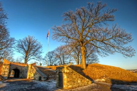 Guards at Akershus Fortress photo