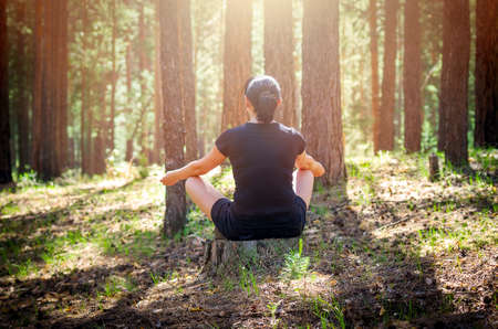 Relaxed Woman Sitting in a Comfortable, Upright Position and Practicing Meditation in the Summer Forest Among Tree Trunks. Forest Meditation Retreat for Bliss and Healing.