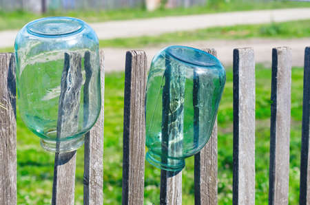 Washed Three Liter Glass Jars Left to Dry Upside Down on Weathered Timber Picket Fence on a Sunny Summer Day.