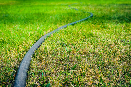 Low Angle View of Black Rubber Garden Hose on Green Lawn. Gardening Concept. Copy Space.