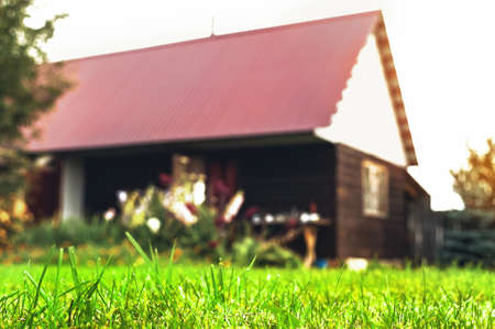 Low-Angle Close-Up of Mowed Green Grass Blades with Blurred Backyard Garden Shed or Outdoor Sauna in Background. Copy Space.