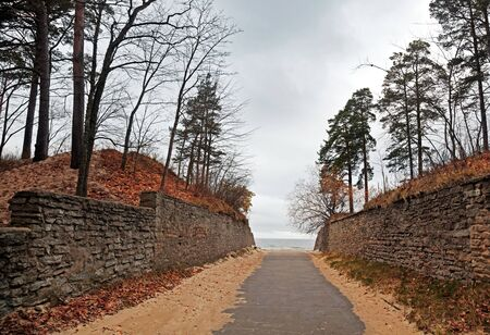 Autumnal Lane to the Baltic Sea  Estonia photo
