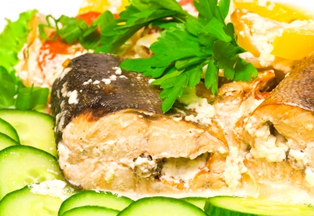 dog salmon: Seafood theme  Pink salmon baked in cream with vegetables and greens on white plate, closeup photo