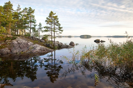 Coastal landscape, Saimaa lake, Karelia, Finland photo