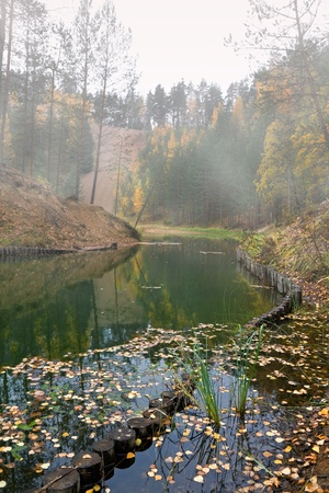 Foggy early morning on the pond with floating autumnal leaves in water photo