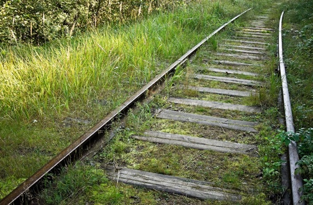Old abandoned railway track in the forest photo