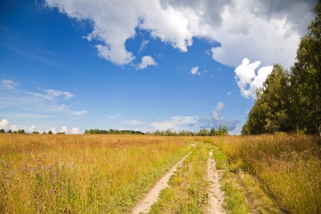 dirt road: Russian rural landscape with dirt road along the field and bright cloudy sky on the background