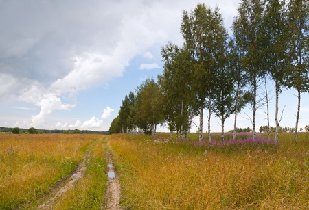 Russian rural landscape with dirt road along the field and bright cloudy sky photo