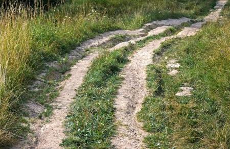 branching: Branching rural pathway