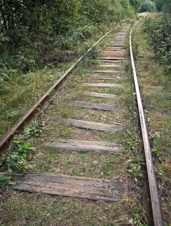 Old abandoned railway track in the forest Stock Photo - 15658669