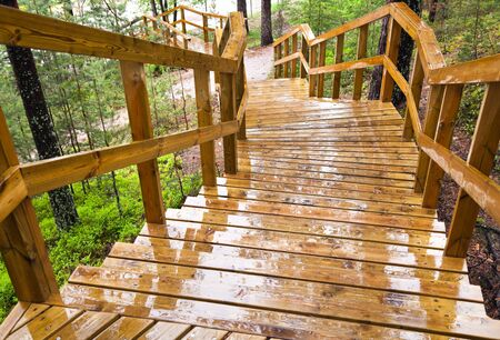 Wet wooden stairway in the forest  Imatra town, Finland photo