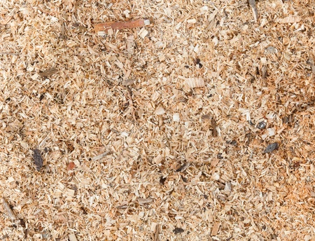 Sawdust detailed photo background texture photo