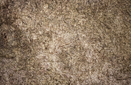 Natural old weathered plywood detailed background texture photo