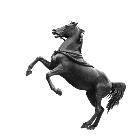 Isolated on white black horse sculpture, designed by the Russian sculptor, Baron Peter Klodt von Urgensburg in 1841  Nevsky Prospect, Anichkov bridge, Saint-Petersburg, Russia Stock Photo - 17694069