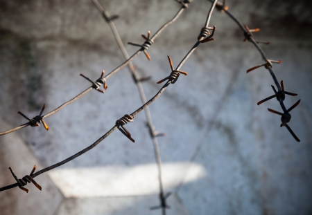 Barbed wire fragment above dark concrete wall