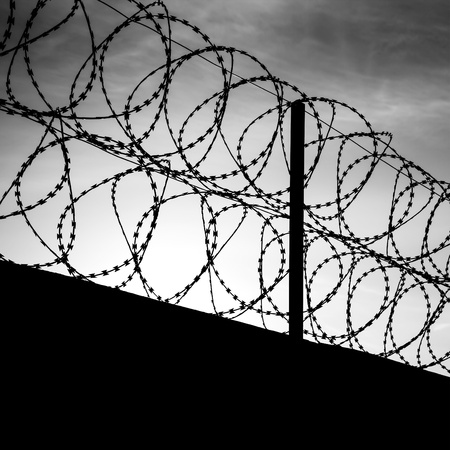 metal wire: Barbed wire on dark fence. Monochrome shilouette photo