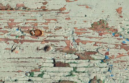 Old weathered painted wooden surface with nails photo