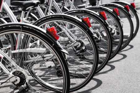 Bicycles stand in a row on a parking for rent