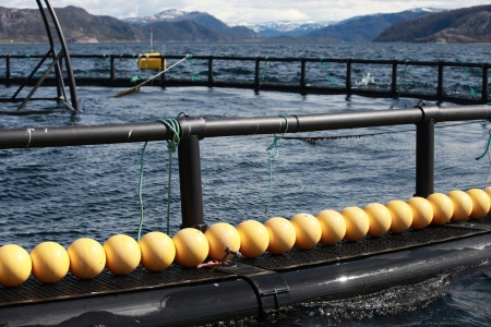 commercial fisheries: Fragment of fish farm for salmon growing in Norway