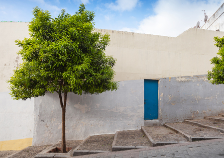 Medina street view, historical part of Tangier, Morocco photo
