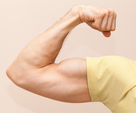 muscular arm: Strong male arm shows biceps. Close-up photo