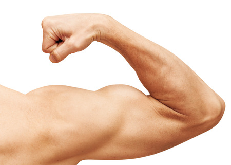 Strong male arm shows biceps. Close-up photo isolated on white Stock Photo