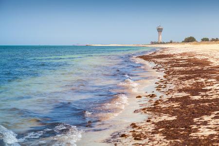 persian gulf: Coast of Persian Gulf in Ras Tanura, Saudi Arabia