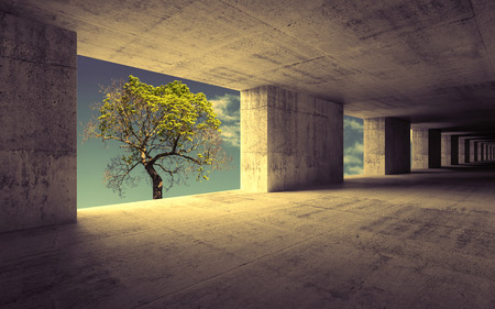 Empty abstract concrete interior with sky and small green tree Stock Photo