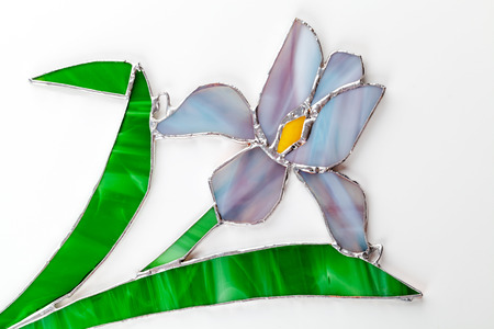 tiffany blue: Stained glass hand-made iris flower on white background