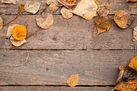 texture with old wooden table and yellow autumnal leaves Stock Photo