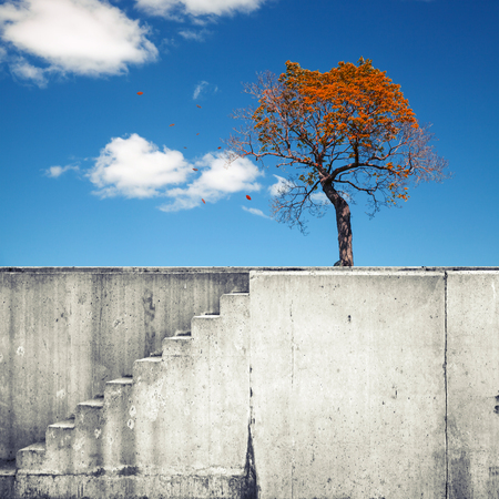 White concrete wall with stairway and small autumnal tree above blue sky photo