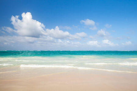 republic dominican: Bright empty beach, coastal landscape. Atlantic ocean coast, Dominican republic. Punta Cana