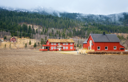 country house: Rural Norwegian landscape with red wooden houses and foggy forest on hills