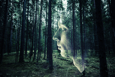 male face profile: Double exposure photo concept with male face profile and dark green forest background.  Stock Photo