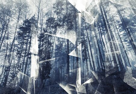 photo collage: Abstract surreal forest background. Blue toned photo collage with chaotic 3d structure