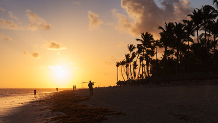 uprise: Orange sunrise over Atlantic ocean coast with palm trees silhouettes. Beach landscape, Hispaniola island, Dominican republic