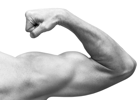 isolated white: Strong male arm shows biceps. Close-up black and white studio photo isolated on white Stock Photo