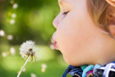 Caucasian blond baby girl blows on a dandelion flower in a park, selective focus on lips Stock Photo