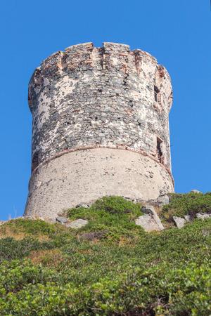 genoese: Genoese tower Parata on Sanguinaires peninsula near Ajaccio, Corsica, France