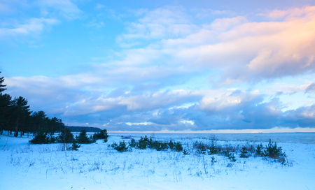cloudy sky: Winter coastal landscape with small trees on Baltic Sea coast under colorful evening cloudy sky. Gulf of Finland, Russia