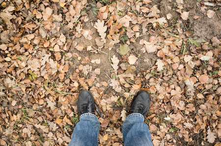 dirty feet: Male feet in blue jeans and black shoes standing on dirty forest ground with autumnal leaves, first person view
