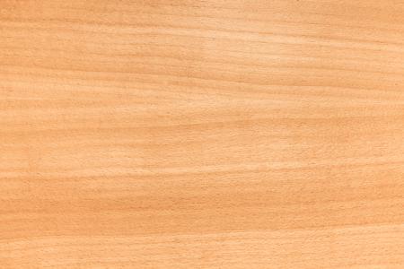 Europejski wzór z drewna bukowego. Close-up tła fotografii tekstura