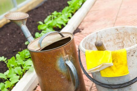 agricultural tools: Agricultural tools in a greenhouse. Watering can, bucket, yellow rubber gloves