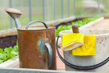 agricultural tools: Agricultural tools. Watering can, bucket, yellow rubber gloves in a greenhouse Stock Photo