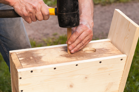 chippy: Wooden birdhouse is under construction, carpenter works with rubber hummer